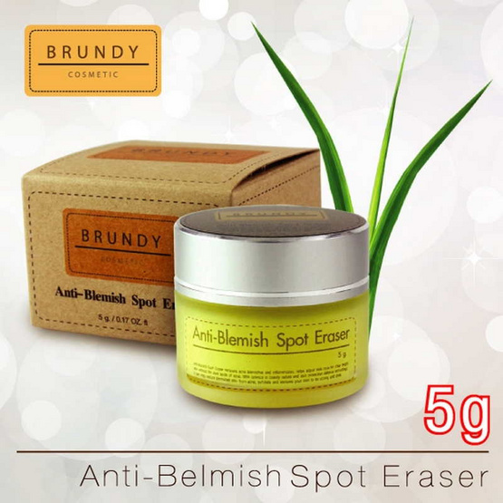 Brundy Anti-Blemish Spot Eraser 5g.