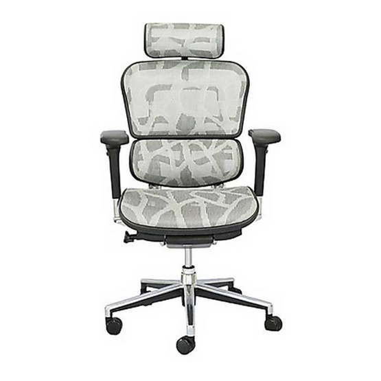 DF Prochair Ergonomic chair (Ergohuman Series) เก้าอี้สำนักงาน มีที่รองศีรษะ ตามหลักสรีศาสตร์ เพื่อสุขภาพ รุ่น EH2 สีขาว (ได้รับรางวัลเก้าอี้สำนักงาน ติดอันดับ Top 10 ของ Ergonomic chair)
