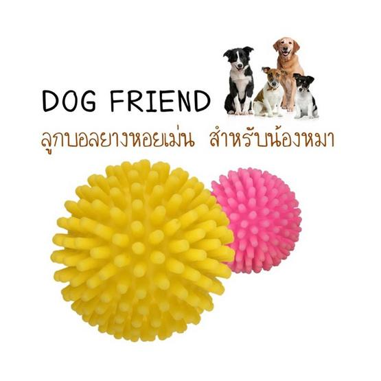 ซื้อ DOG FRIEND ลูกบอลยางหอยเม่น 8 cm (คละสี)