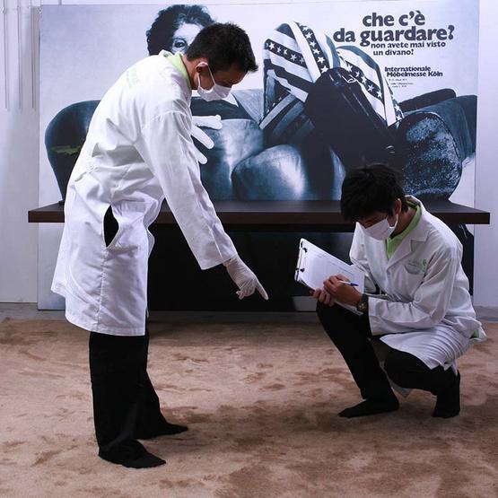 De Hygienique บริการทำความสะอาดและฆ่าเชื้อโรคพรม