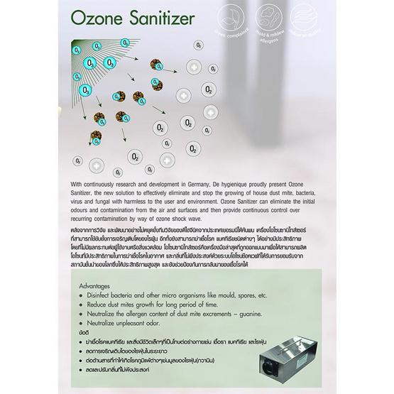 De Hygienique บริการทำความสะอาดและฆ่าเชื้อโรคในอากาศ (Ozone)