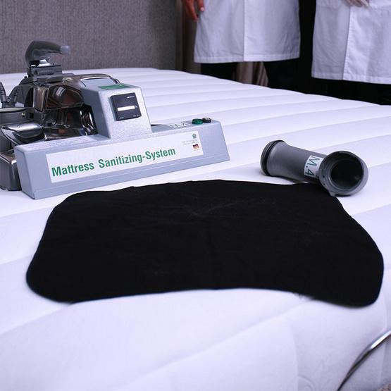 De Hygienique บริการทำความสะอาดและฆ่าเชื้อโรคที่นอน ขนาด Single