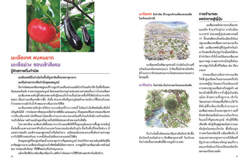 หนังสือ ปลูกพืชตามนิสัยผัก 01