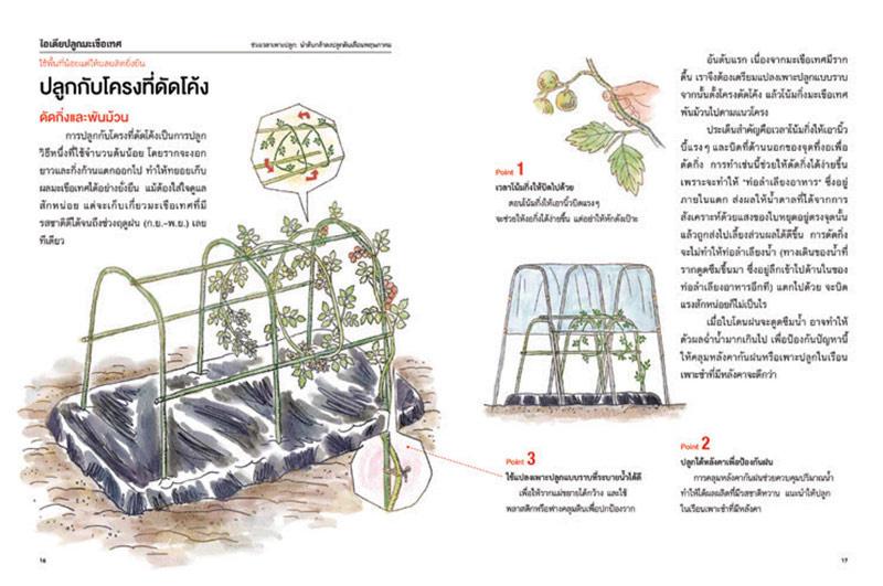 หนังสือ ปลูกพืชตามนิสัยผัก 02