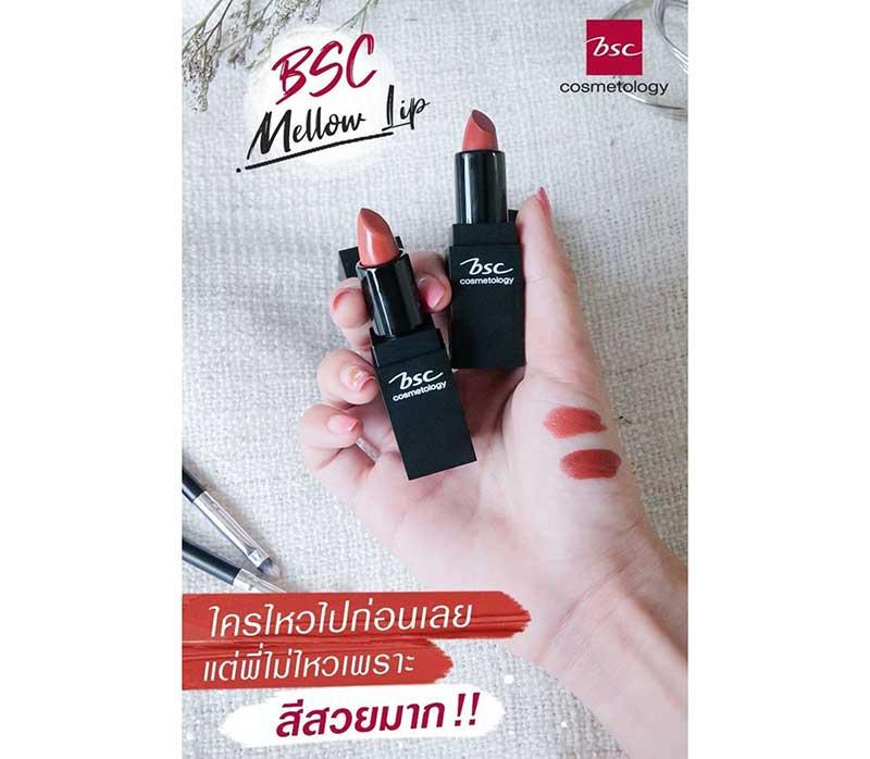 01 BSC MELLOW MATTE LIPSTICK 3.5 g #NF
