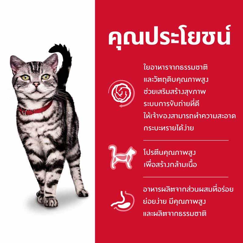 Hills Science Diet อาหารแมว อายุ 1-6 ปี สูตรแมวเลี้ยงในบ้าน ขนาด 1.59 กก.