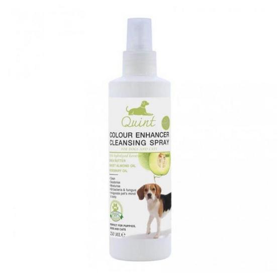 Quint สเปรย์ทำความสะอาดสำหรับสุนัขและแมว กลิ่นเมล่อน 250 ml.