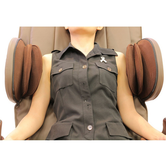 WELNESS MASSAGE CHAIR เก้าอี้นวดไฟฟ้า รุ่น YH-8800