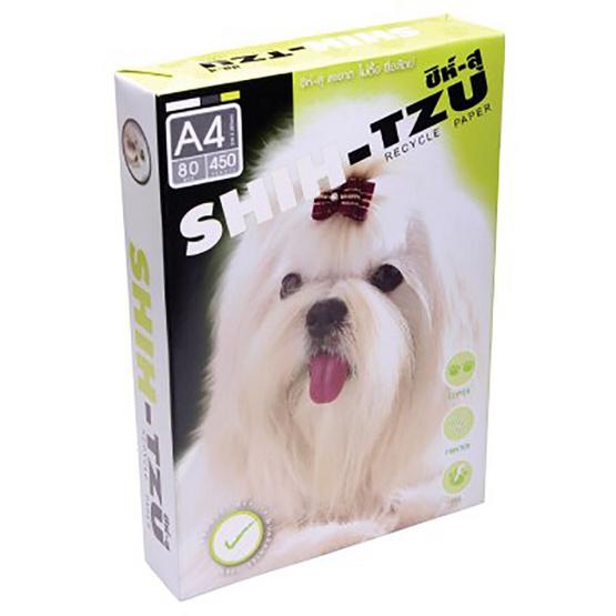 SHIH-TZU กระดาษถ่ายเอกสาร A4 80แกรม เขียว (5 รีม/แพ็ค)