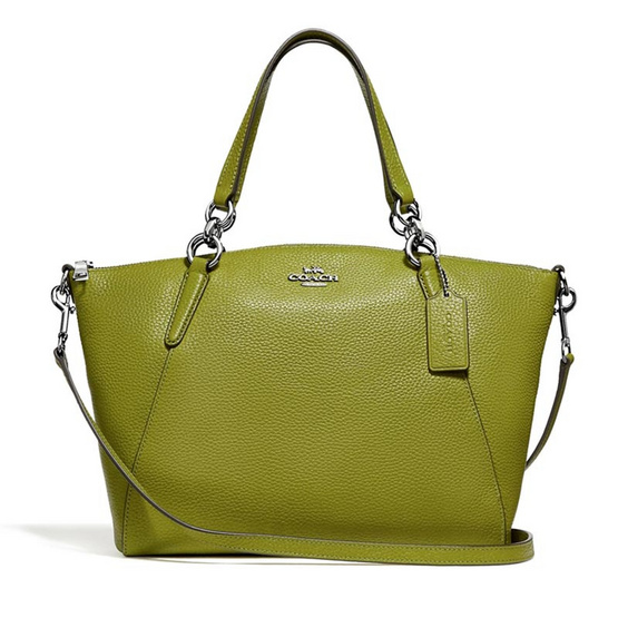 กระเป๋า COACH F31076 SMALL KELSEY SATCHEL WITH FLORAL BUD PRINT INTERIOR (SVAX7) [MCF31076SVAX7]