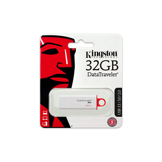 Kingston Flash Drive DataTraveler G4 32 GB