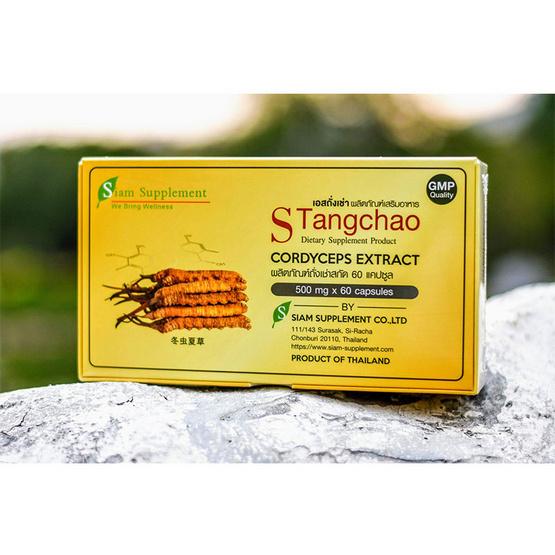 S-Tangchao (เอสถั่งเช่า) ถั่งเช่าสกัด 450 มก. 1 กล่อง บรรจุ 60 แคปซูล