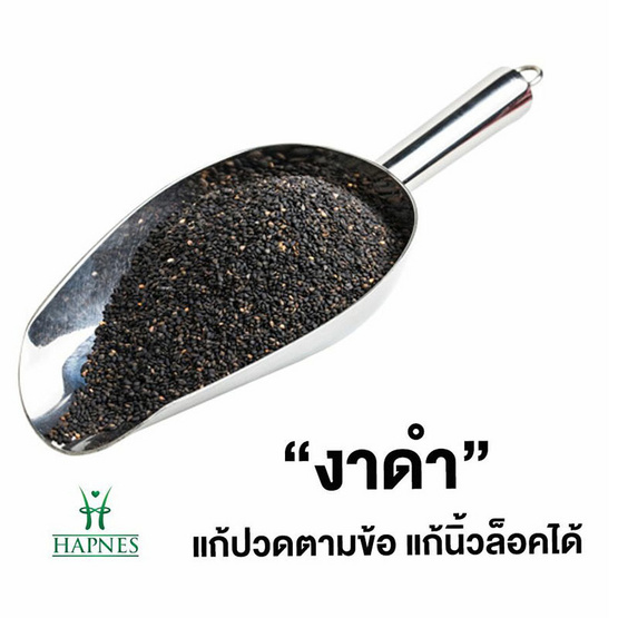 HAPNES น้ำมันงาสกัดเย็น น้ำมันงาดำสกัดเย็น น้ำมันงาม้อนสกัดเย็น 30 แคปซูล 3 กล่อง ฟรี ตลับใส่ยา 1 ชิ้น