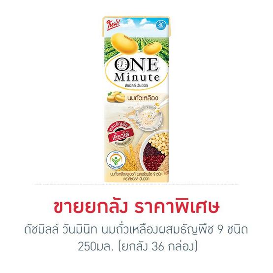 ดัชมิลล์ วันมินิท นมถั่วเหลืองผสมธัญพืช 9 ชนิด 250 มล. (ยกลัง 36 กล่อง)