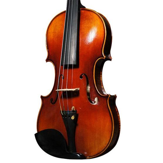 Del Gesu Violin ไวโอลินแฮนด์เมด 4/4 รุ่น 493L