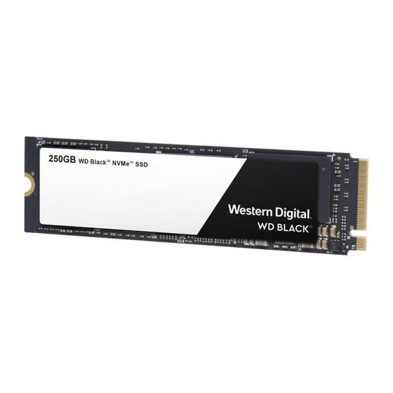 WD SSD Black M.2 PCIe Gen3 250 GB (WDS250G2X0C)