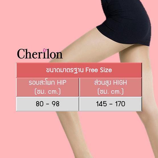 CHERILON เชอรีล่อน รุ่น NSA-CLICS Linen Sheer Support ถุงน่องเนื้อลินินเชียร์ Pack 6 คู่
