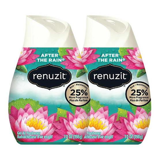 Renuzit รีนูซิต เจลปรับอากาศ กลิ่นอาฟเตอร์เดอะเรน 198 กรัม (2 ชิ้น)