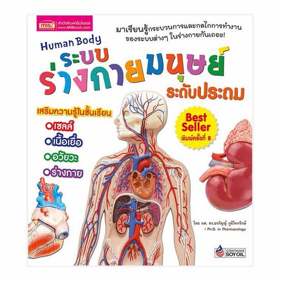 ระบบร่างกายมนุษย์ ระดับประถม Human Body
