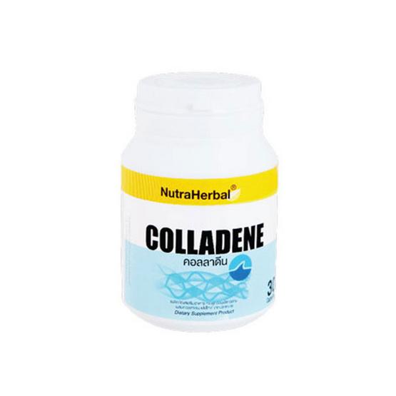 NutraHerbal คอลลาดีน 30 แคปซูล 1 กระปุก