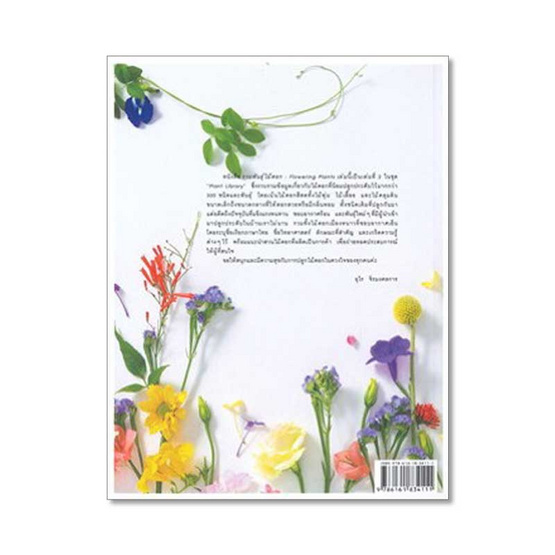 รวมพันธุ์ไม้ดอก : Flowering Plants
