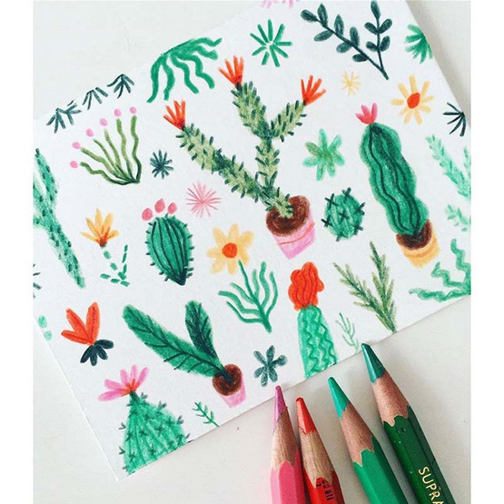 Caran D'Ache ชุดดินสอสีระบายน้ำ Supracolor 80 สี 3888.480
