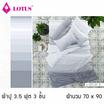 Lotus รุ่น Impression ลาย Stripies LI-SD-00B ผ้าปูที่นอน  + ผ้านวม