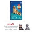 สมาร์ฮาร์ท อาหารสุนัขโต ไก่และตับ 10 kg