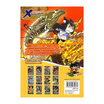 X-Venture Xplorers คู่หูผจญภัยล่าขุมทรัพย์สุดขอบโลก เล่ม 9 เปิดผนึกผู้พิทักษ์ทองคำ (ฉบับการ์ตูน)