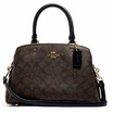 COACH 91494 MINI LILLIE CARRYALL IN SIGNATURE CANVAS (IMAA8)