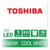 TOSHIBA  หลอด LED Bulb G7 9W คูลไวท์ E27