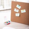 Deli 0031 หมุดสีปักกระดาษ (100 ตัว/กล่อง)