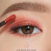 LRY Eyes & Lips Frost #F05 blow me away