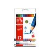 Caran D'Ache ดินสอสีแท่งจัมโบ้ 12 สี Fancolor 498.712
