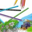 Caran D'Ache ดินสอสีระบายน้ำ Prismalo 12 สี 999.312